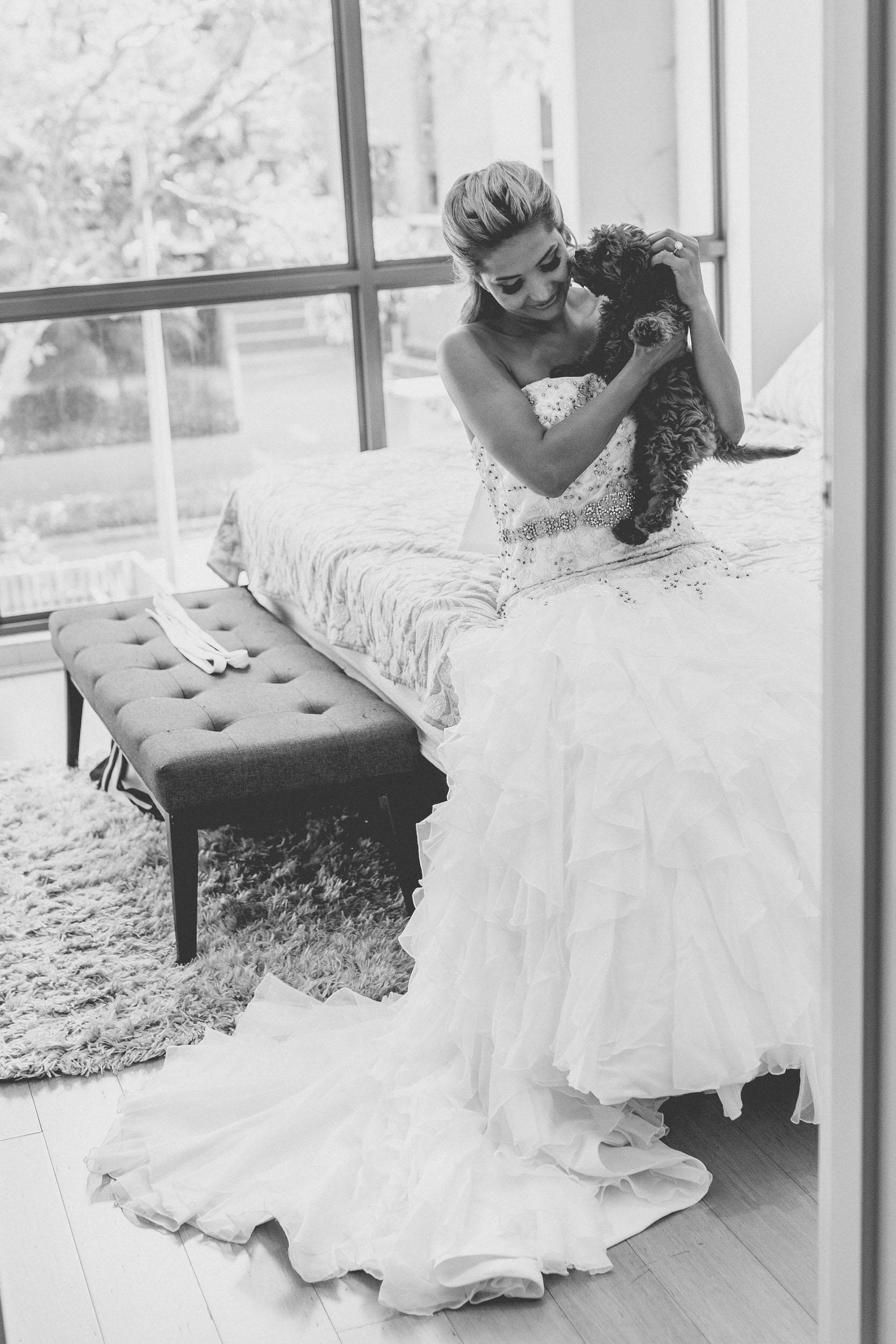 bride cuddling puppy